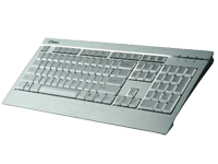 Enermax Aurora Silver - the Holy Grail among keyboards.